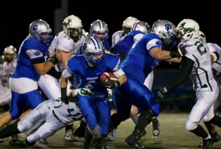 Cougars roar to dominating semifinal win