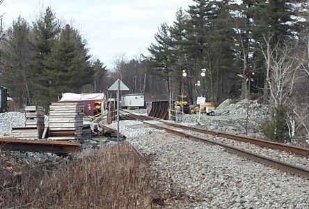 St. Lawrence and Atlantic back on the rails