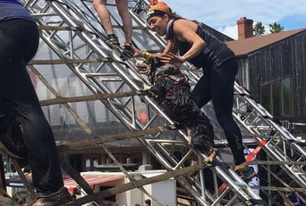 Spartan Race Inc. opens Canada journey at Owl's Head
