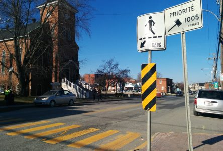 Hit and run reignites crosswalk concerns