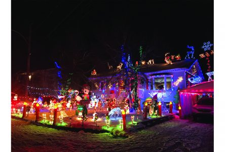 Christmas light tour up and running