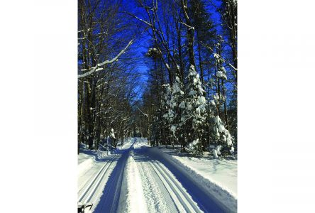 Richmond et ses Jeunes invites families to try cross-country skiing this winter