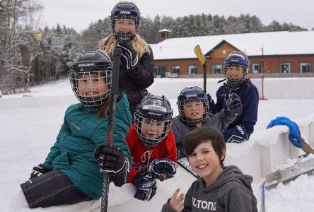 The Huntingville backyard rink