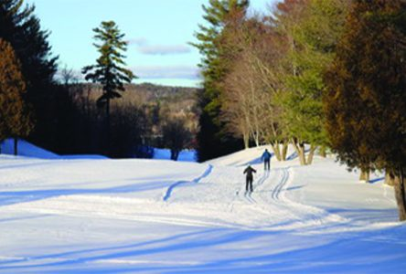Old Lennox Club provides recreational and elite cross-country skiing