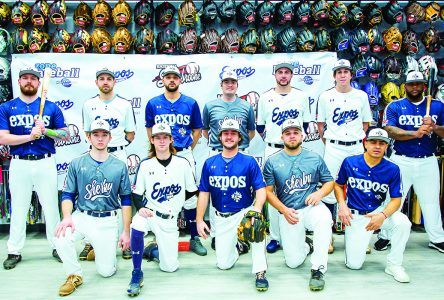 Senior amateur baseball set to return in May