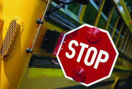 Drivers continue to break road laws around  school buses