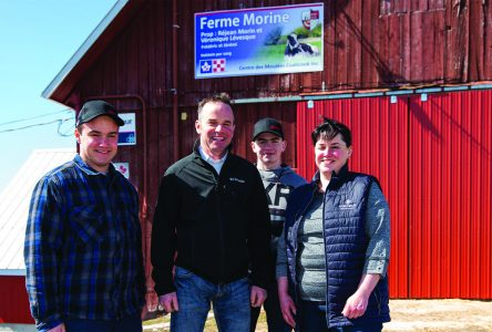 Coaticook farm wins gold for exceptional milk quality