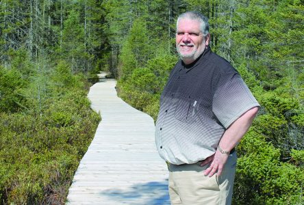 Johnville bog planning for the future