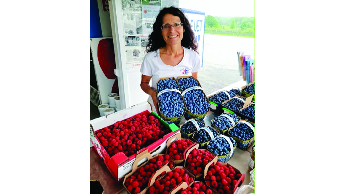 Blueberry season escapes damaging May frosts