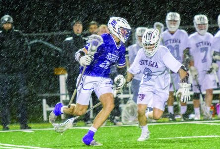 Gaiters cruise past Gee-Gees on damp Saturday night